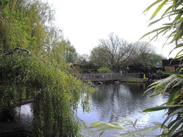 Willington Garden Centre