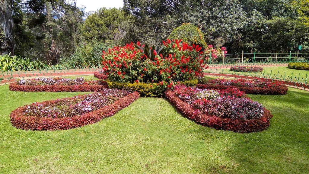 gardening knowledge